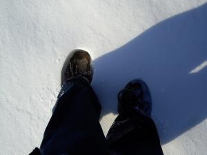 hudson river valley, hyde park ny, vanderbilt mansion hyde park ny, hudson river in winter, hudson river snow, vanderbilt mansion ny
