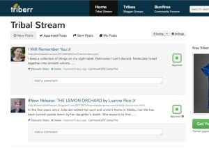 triberr, triberr landing page, triberr blogging platform
