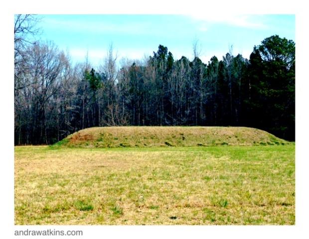 bear creek mound, natchez trace
